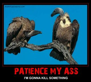 Vultures-patience-my-ass