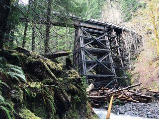 SalmonberryTrailroad8_Wolf Creek