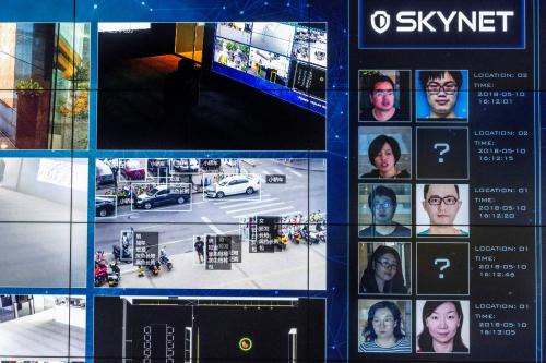 Skynet_china